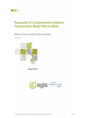 Short Term Action Plan Report - August 2017